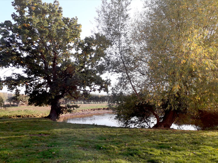 Countryside Location
